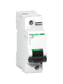 C120 A9N18491 - C120H - circuit breaker - 1P - 100A - D curve , Schneider Electric