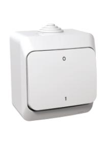 Cedar Plus WDE000520 - Cedar Plus - 2pole switch - 16AX, white , Schneider Electric
