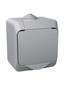 Cedar Plus WDE000610 - Cedar Plus - 1pole switch - 16AX, grey , Schneider Electric