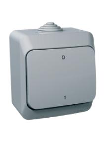Cedar Plus WDE000620 - Cedar Plus - 2pole switch - 16AX, grey , Schneider Electric