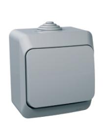 Cedar Plus WDE000660 - Cedar Plus - 1pole 2way switch - 16AX, grey , Schneider Electric